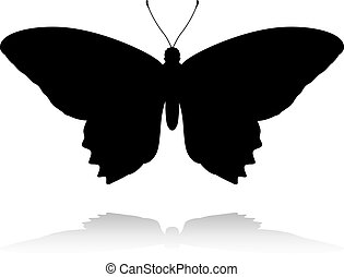 Butterfly Insect Animal Silhouette