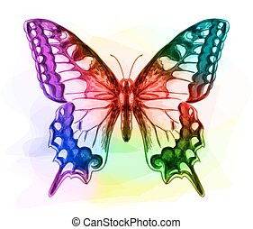 Butterfly. Iridescen colours.