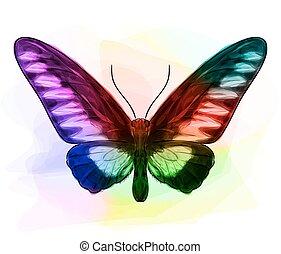Butterfly. Iridescen colours.