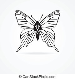 butterfly isolated on white background