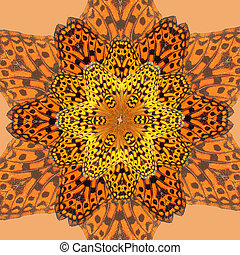 Butterfly kaleidoscope - Photograph of a live butterfly...