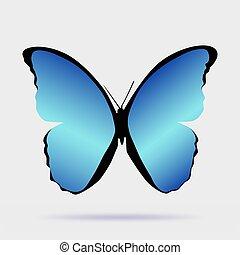 Butterfly Morpho didius realistic design