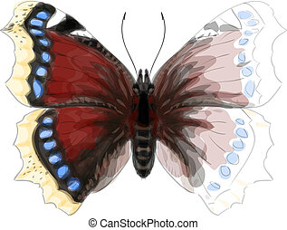 Butterfly Numphalis Antiopa. Watercolor imitation.