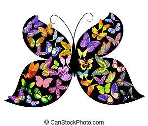 Butterfly of butterflies