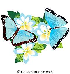 Butterfly on a flower -5