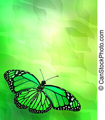 Butterfly on abstract lights background