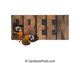 butterfly on green word