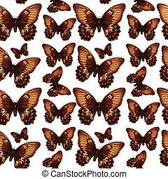 Butterfly on seamless pattern