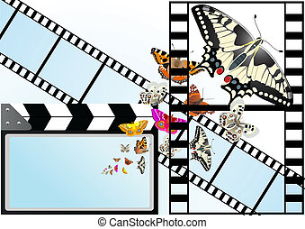 Butterfly on the background of the