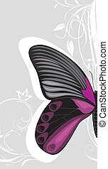 Butterfly on the gray background