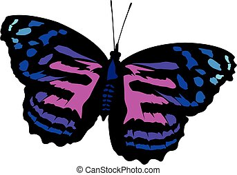 butterfly purple realistic vector illustration isolated