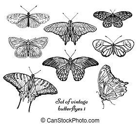 butterfly set 1