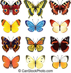Butterfly set - Vector illustration - butterfly icon set