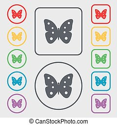 Butterfly sign icon. insect symbol. Symbols on the Round and square buttons with frame. Vector