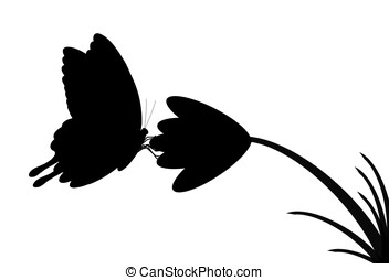 butterfly silhouette - illustration, silhouette of...