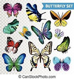 Butterfly Transparent Set