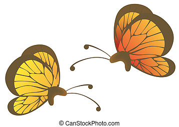 two beautiful butterflies in a white background