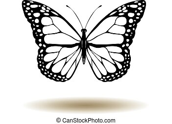 Butterfly - vector butterfly