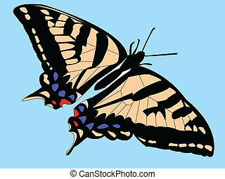 Butterfly with background