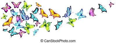 butterfly369