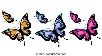 butterfly481