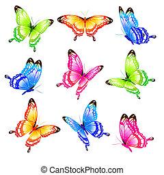 butterfly643
