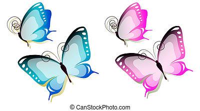 butterfly672