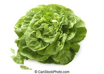 Butterhead lettuce isolated on white