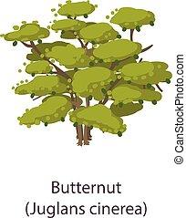 Butternut icon, flat style - Butternut icon. Flat ...