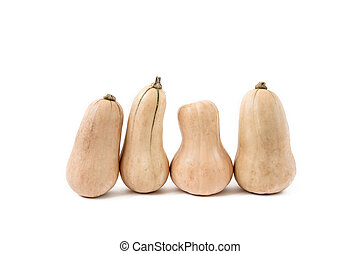 Butternut pumpkins with on white background.