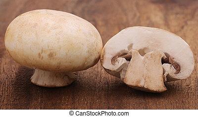 Button Mushroom - Close up of Button Mushroom