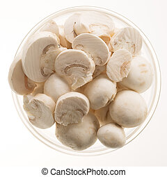 Button Mushrooms Isolated