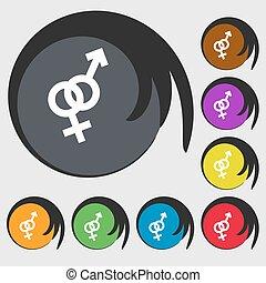 buttons., colorato, segno, simboli, vettore, otto, femmina, icon., maschio