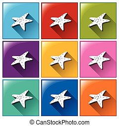 Buttons with starfish