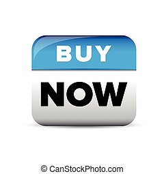 Buy now button blue vector