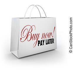 Buy Now Pay Later Words Shopping Bag Credit Financing Offer...