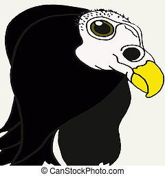 buzzard, fantasmagórico