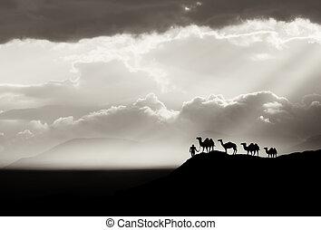 bw, 砂漠, 背景