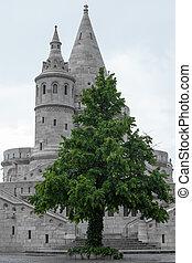 b&w Budapest, Fishermen's Bastion with freen tree