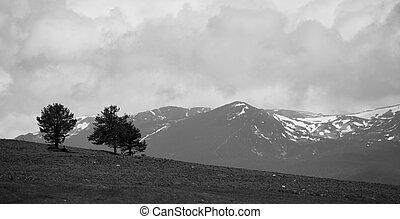 bw mountain
