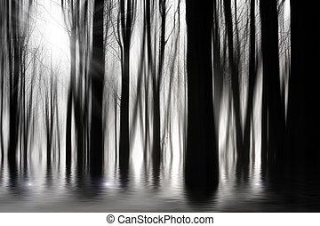 bw, spooky, inundação, madeiras