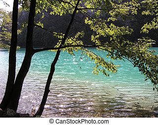 Taken at the Plitvicka Jezera National Park, Croatia.