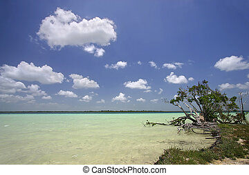 By the shores of the white sandy-bottomed, clear, turquoise, freshwater lake of Lake Bacalar