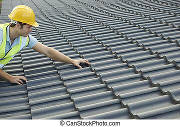 byggnad, färsk, byggmästare, tak, arbete