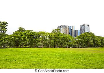 byggnad, in, natur