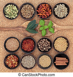 bylina, koření, vzorník