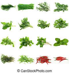 byliny, vybírání