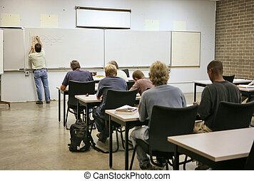 cálculo, educación, -, adulto