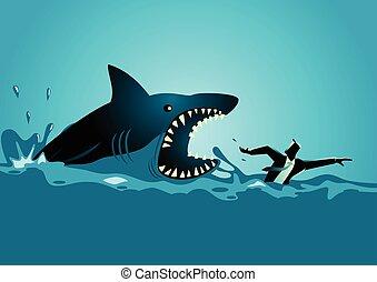 cápa, támad, elkerül, panicly, üzletember, úszás