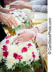 cáscara, concha, barra, mano, tradicional, utilizado, primer plano, cantó, boda, tailandés, nam